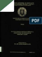 Tesis Análisis de Riesgo.pdf