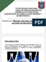 Manejo, Marcado y Distribución de Animales de Laboratorio