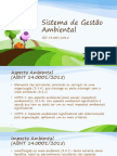 Gestão Ambiental - SGA-P01