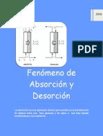 fenomeno de absorcion y desorcion_ing.quimica.docx