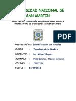 Practica 1 - Manuel