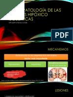 5 Neuropatología de Las Lesiones Hipóxico Isquémicas