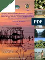 Informe CGSM 2012