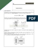 Magentismo II.pdf
