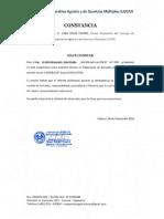 CONSTANCIA ELVER.docx