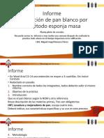 Informe pan blanco 18.pdf