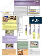 Afiche Facies of Upper Cretaceous and Palaeocene Postrift Sediements Basin Postosi