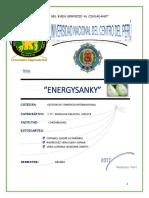 Energysanky Idea de Negocio