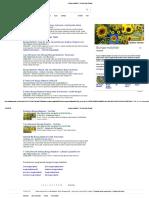 Bunga Matahari_ - Penelusuran Google