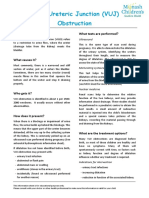 8521_VUJ_obstruction-1.pdf