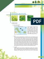311964439-Data-Kehutanan-Bangka-Belitung.pdf