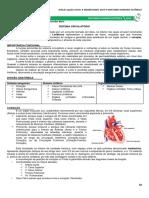 Medresumos 2014 - Anatomia Humana Sistêmica 06 - Sistema Circulatório