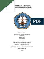 foraminifera plangtonik.docx