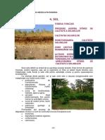 RaportStareaMediului_Cap04_Sol_200710295649999.pdf
