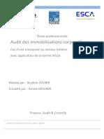 Deloitte -Audit Immobilisation Corporelles