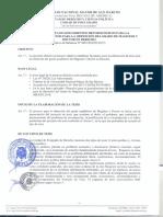 Protocolo UNMSM proyecto y tesis.pdf