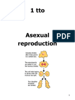 1t asexual reproduction 09-10.doc