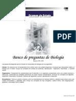 2006-1 Profundización