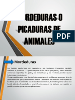 Mordeduras o Picaduras de Animales
