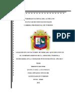 290859680-Tesis-Demanda-Turistica-Del-Turista-Extranjero.pdf