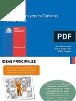 CULTURAS PREVENTIVAS 2015