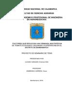 PROYECTO DE TOMATE ECOLOGICO  TERMINADO.docx