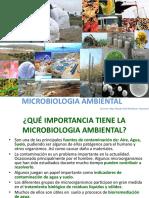 Diversidad Microbiana