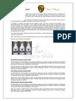 WS mechas - RP.pdf