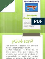 Bacterias Metanogénicas- Nataly Mora_Química Orgánica