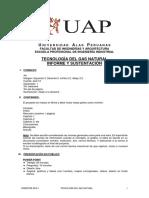 Formato Sustent Proyectos Tecnologia Gas Natural 2016-1