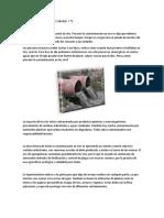 Contaminacio Del Rio