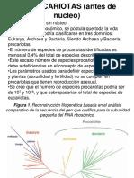 3. procariotas.1.pdf