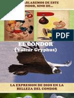 Presentacion Condor