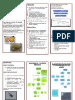 Parametros de Calidad Del Agua y Criterios de Calidad