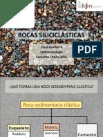Componentes Rxs Siliciclasticas