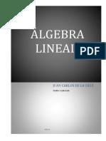 110349450 Libro 1 Jcdelacruz Algebra Lineal