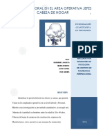 Trabajo Metodos Cualitativos en Psicologia