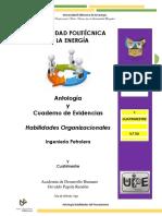Antologia Habilidades Organizacionales 2018-I IP