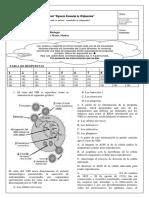 PI4-09-02-BIOLOGIA-ANAM