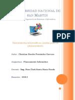 Herramientas Informáticas Usadas Para El Planeamiento-Christian Hassler Fernández Guevara