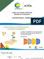 Lineas de Credito Ambiental e Incentivos PL