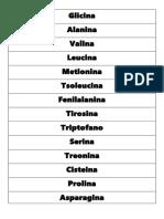 aminoacidos (1)
