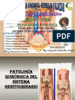 Trabajo de Patolodia Quiruegica Sistema Genitourinario