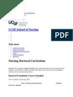Nursing Doctoral Curriculum