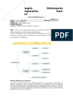 GUIA INFORMATICA 11° -HIDROCARBURO