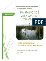 233280580-Hu-Medal-Villa-Maria.docx