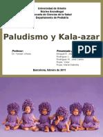 Seminario 12 Paludismo y Kala Azar