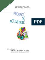 Proiect de Activitate Fizica