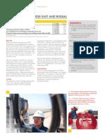 Shell Investor Handbook 2013