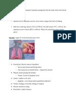 respiratory system notes - sebastian cortina